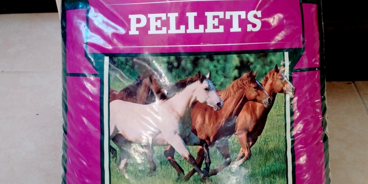 Keeping the horses happy